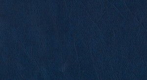 Emboss P150-159 No.22